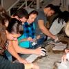 Mozaik-plombiranje (mr. Esad Vesković, mr.Darko Šobot i mr.Dženan Šehić - predavanje o mozaiku, izrada kopije i restauracija mozaika u Zemaljskom muzeju BiH)